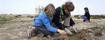Lobatos y Troperos se van de Reforestación