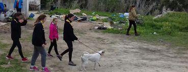 2º Día del Equipo Cameron en Refugio de Animales